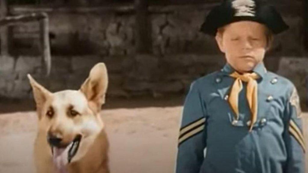 C'est à l'âge de 11 ans que Lee Aaker décroche le rôle du jeune caporal Rusty, toujours accompagné de son acolyte Rintintin.