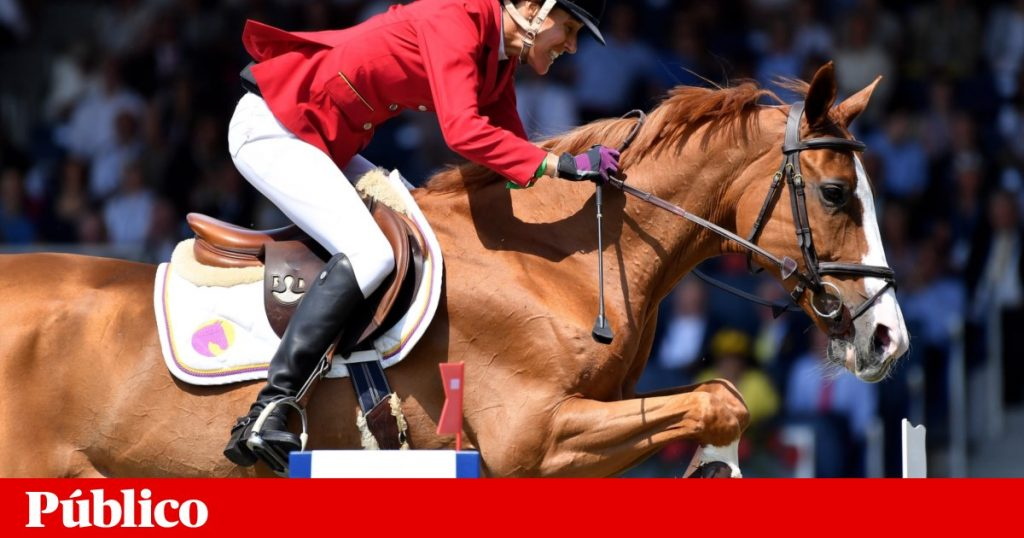 Portugal wants the equestrian medal from Luciana Deniz |  Riding