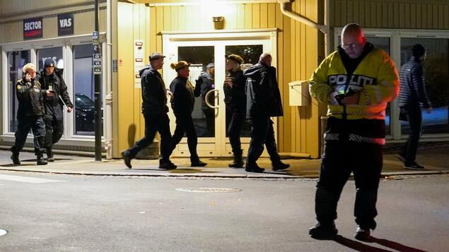 """""""Law acts like an act of terrorism"""": The motive of the perpetrator after the Norwegian attack is not yet clear - Panorama - Society"""