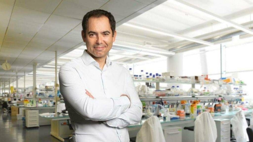 Portuguese scientists find a way to reduce visceral fat in humans